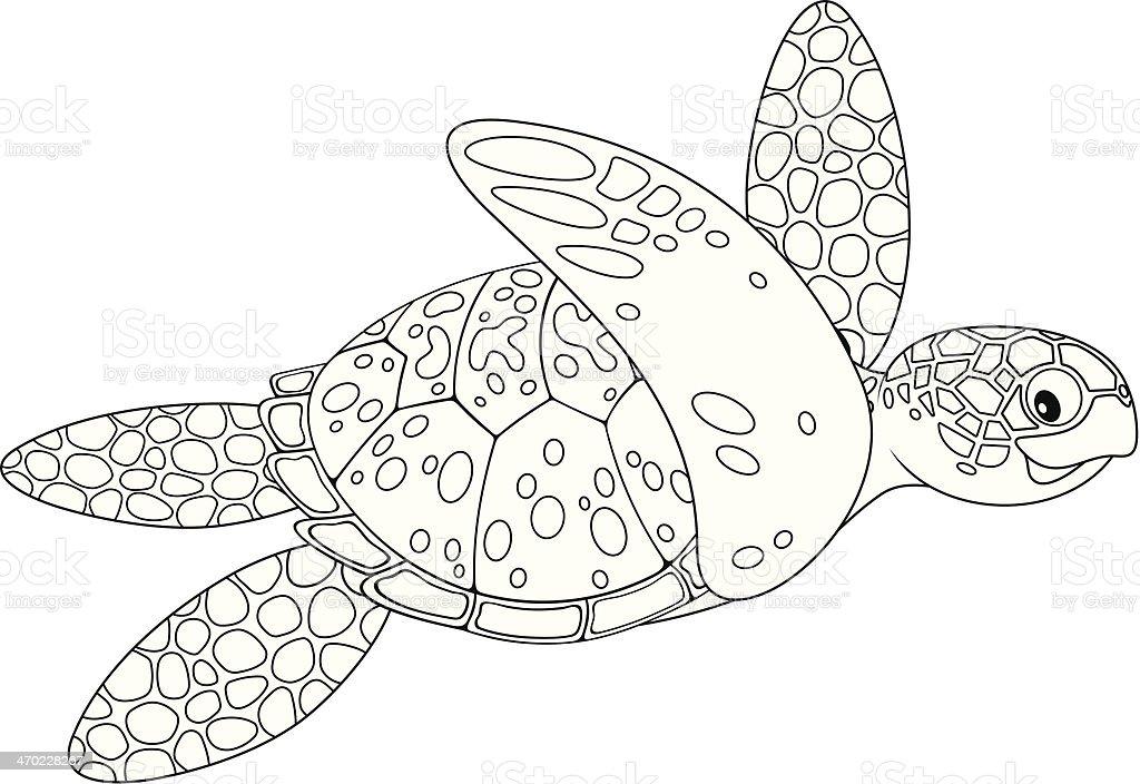 Tartaruga Marina Illustrazione 470228267 Istock