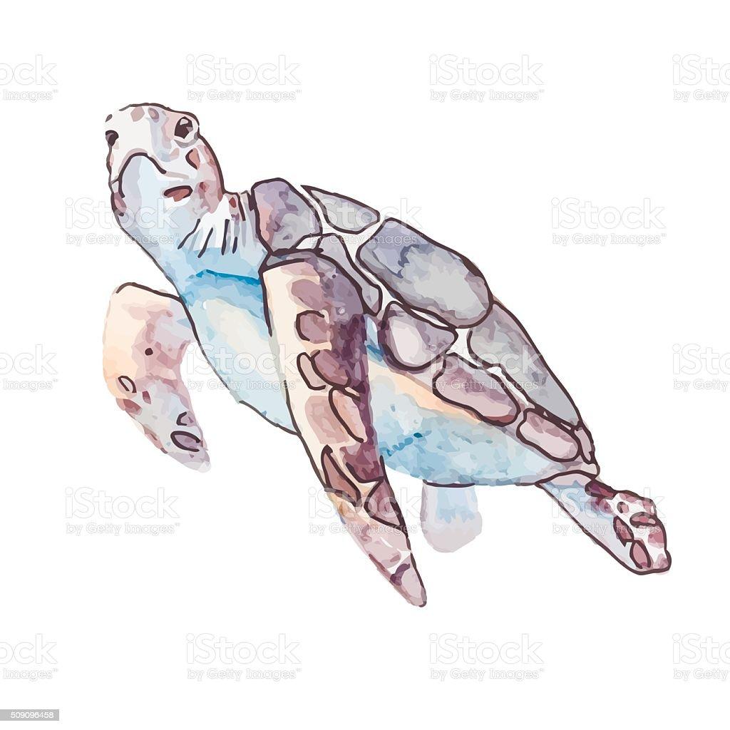 Sea turtles. Ocean vector vector art illustration