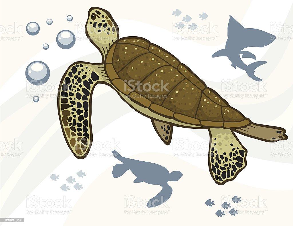 Ilustración de Tortugas De Mar y más banco de imágenes de Aleta ...