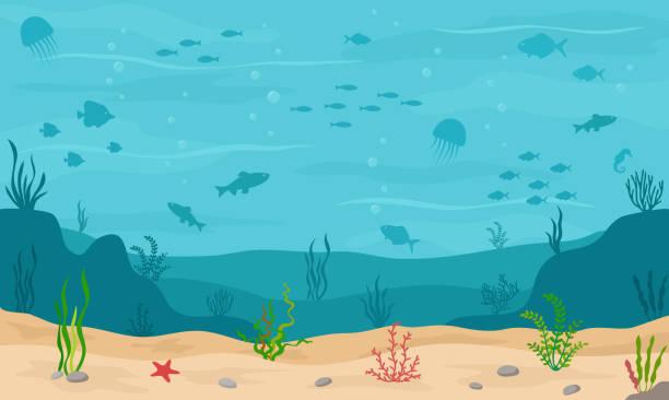 meer unter wasser hintergrund. meeresboden mit unterwasserpflanzen, korallen und fischen. - unterwasseraufnahme stock-grafiken, -clipart, -cartoons und -symbole