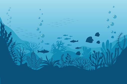 Sea underwater background. Ocean bottom with seaweeds. Vector marine scene