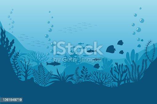 Sea underwater background. Ocean bottom with seaweeds. Vector marine scene. Ocean scene, sea underwater, undersea life on bottom illustration