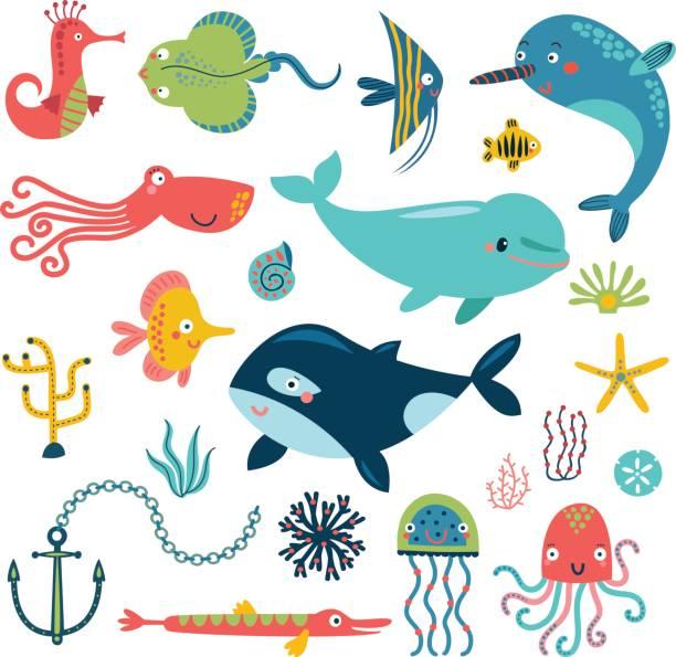 sea vector set - marine life stock illustrations