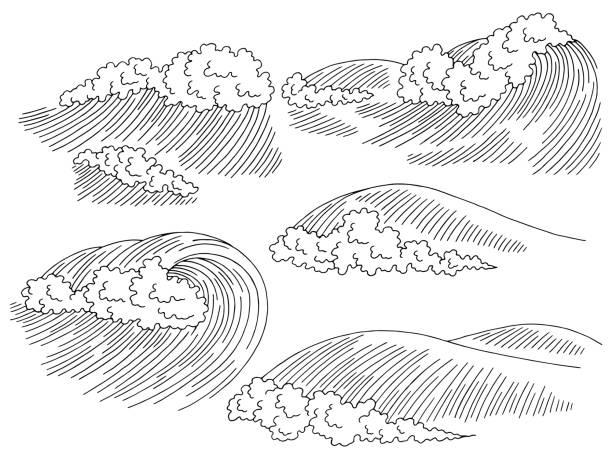 Best Cartoon Of A Black White Ocean Wave Illustrations