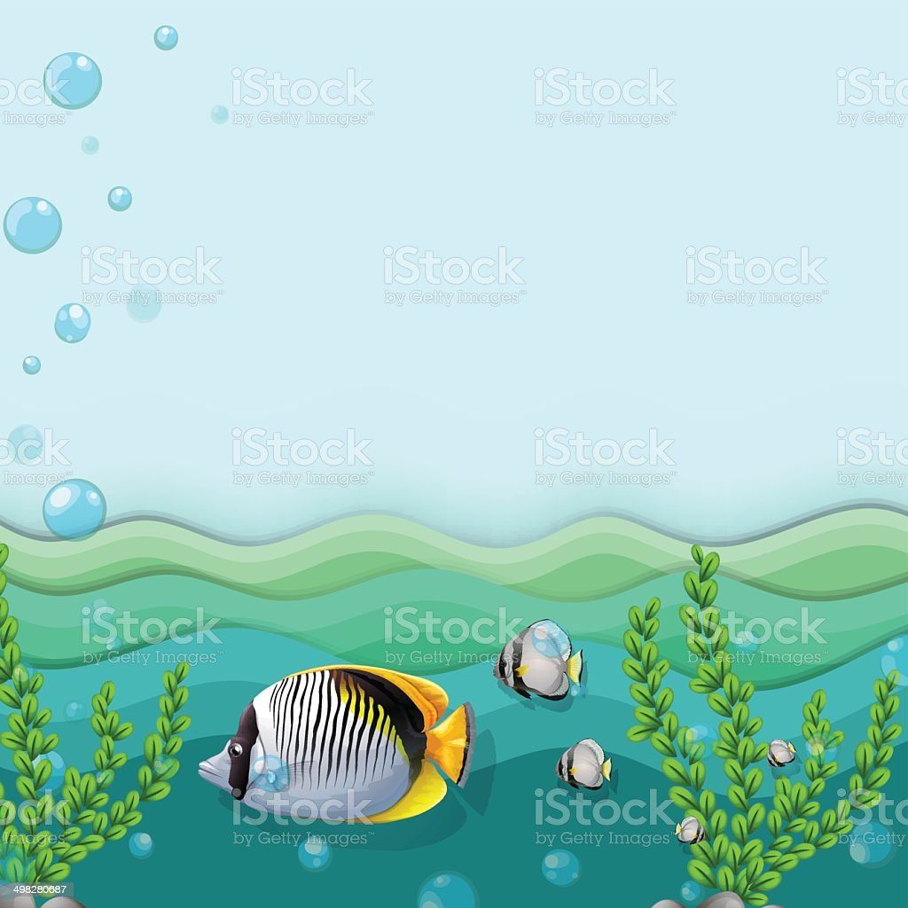 Sea with fishes and seaweeds vector art illustration