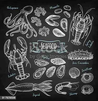 Seafood big set. Chalk sketch on blackboard background. Hand drawn vector illustration. Retro style.
