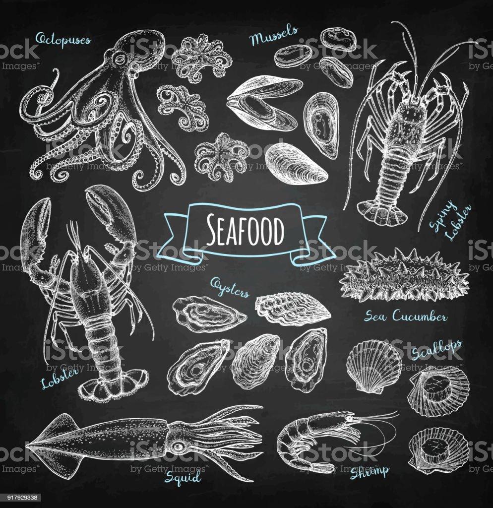 Seafood chalk sketch vector art illustration