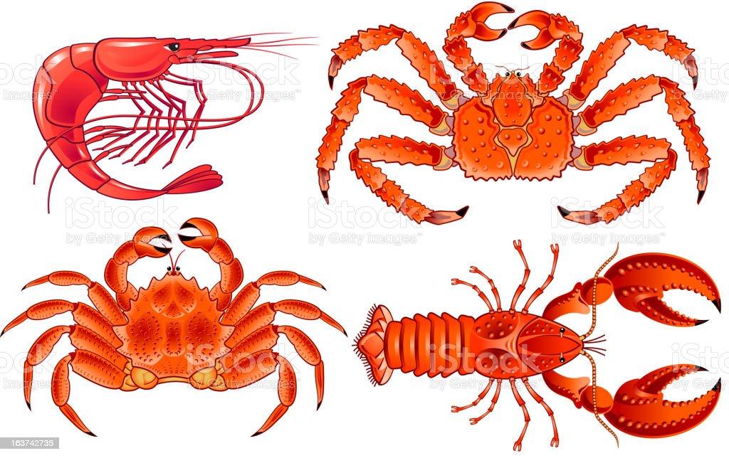 SeaFood crawfish shrimp royalty-free stock vector art