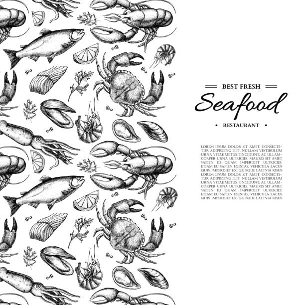 Seafood hand drawn vector illustration. Crab, lobster, shrimp, oyster, mussel, caviar Seafood hand drawn vector illustration. Crab, lobster, shrimp, oyster, mussel, caviar and squid. Engraved style vintage template. Fish and sea food restaurant menu, flyer, card, business promote seafood stock illustrations