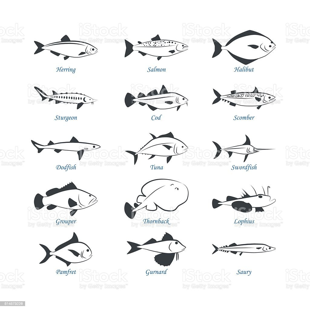 Seafood icons. Fish icons vector art illustration