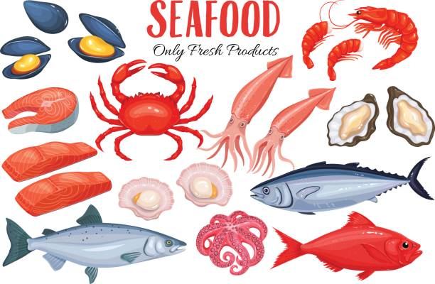 Seafood in cartoon style Seafood in cartoon style. Vector icons mussel, fish salmon, shrimp, squid, octopus, scallop, lobster, craps, mollusk, oyster, alfonsino and tuna. seafood stock illustrations