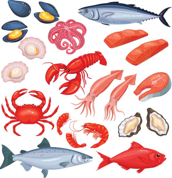 seafood in cartoon style. - redfish stock illustrations, clip art, cartoons, & icons