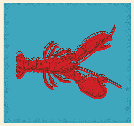 Seafood lobster drawing