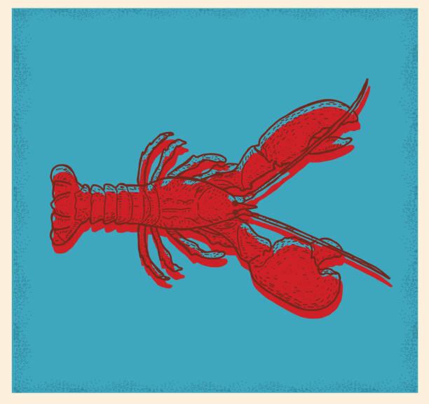 Seafood lobster drawing vector art illustration