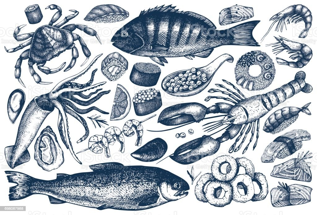 seafood outlines collection vector art illustration