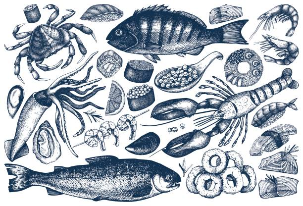 collection de contours de fruits de mer - Illustration vectorielle