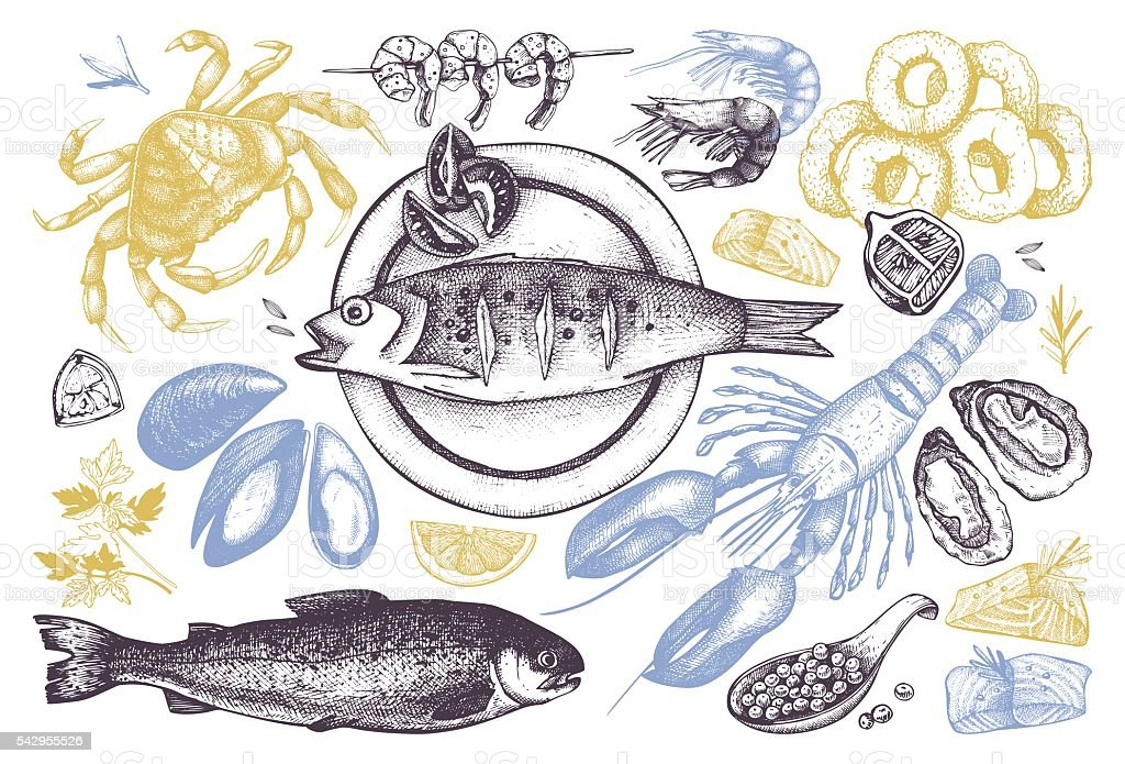 Seafood outlines isolated on white. vector art illustration