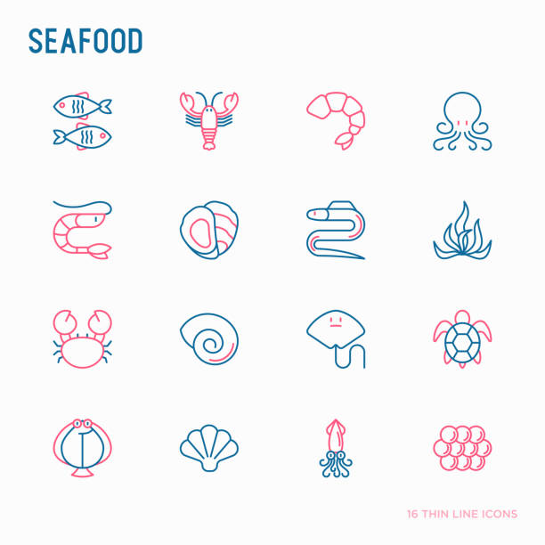 meeresfrüchte dünne linie symbole satz: hummer, fisch, garnelen, tintenfisch, austern, aal, algen, krabbe, rampe, schildkröte. moderne vektor-illustration für die speisekarte des restaurants. - algen stock-grafiken, -clipart, -cartoons und -symbole