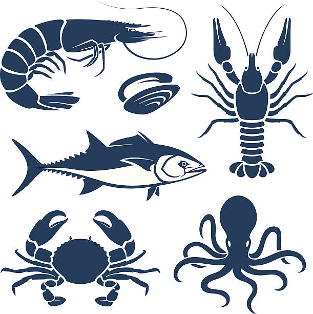 Best Seafood Illustrations Royalty Free Vector Graphics