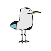 Vector illustration of a cute seagull in a cartoon drawing style. Pencil, ink and simple colors. Design element good for nature and animal themes, ideas and concepts. Also goof for children's books, learning and wildlife stories.