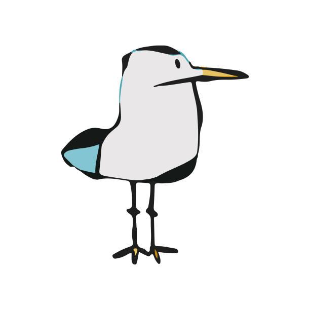 bildbanksillustrationer, clip art samt tecknat material och ikoner med seagull tecknad ritning - stillsam scen