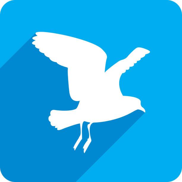 ilustrações, clipart, desenhos animados e ícones de silhueta do ícone voador de gaivota 2 - ícones de design planar