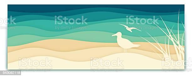 Seagull ocean banner vector id543062118?b=1&k=6&m=543062118&s=612x612&h=r8h6ctv8qr9r pgiyrgquoktmxwbkalclogof1zib4g=