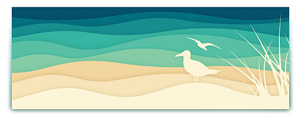 seagull ocean banner - vintage nature stock illustrations, clip art, cartoons, & icons