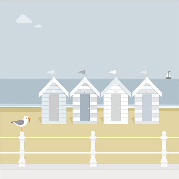 Seagull waiting on the beach goers to exit the stalls  vector art illustration