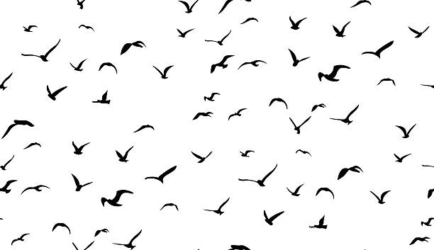 seagulls flying in the sky, seamless vector pattern - birds stock illustrations