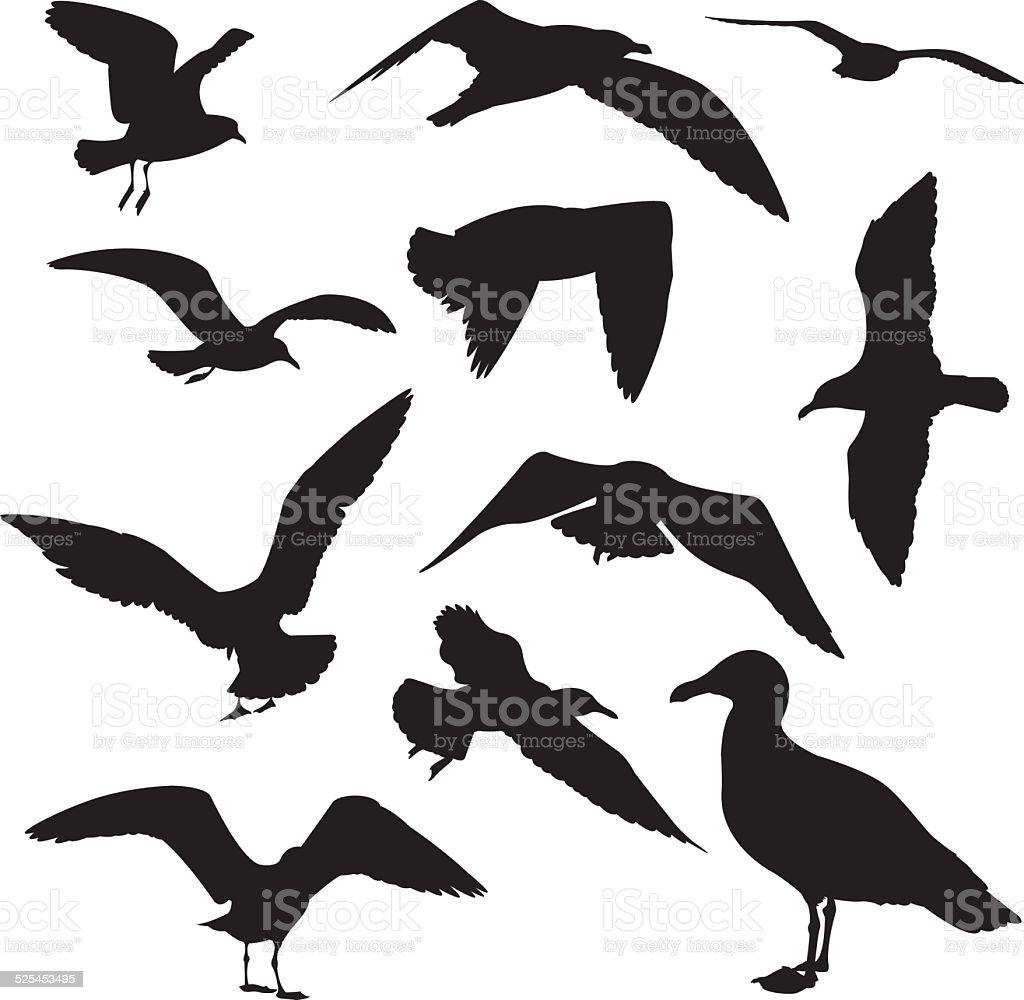 Seagulls Silhouette vector art illustration