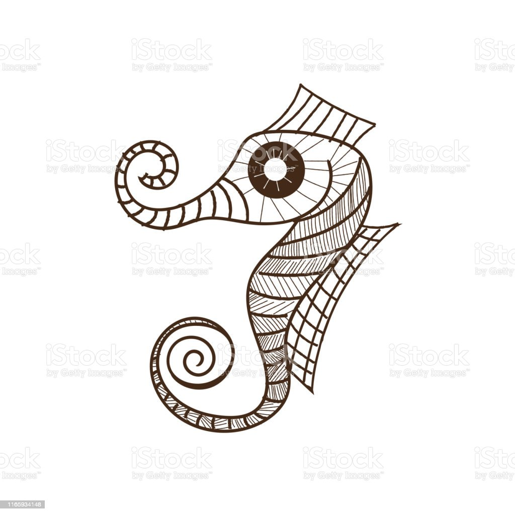 Seahorse Drawing Illustration Stock Illustration Download Image Now Istock