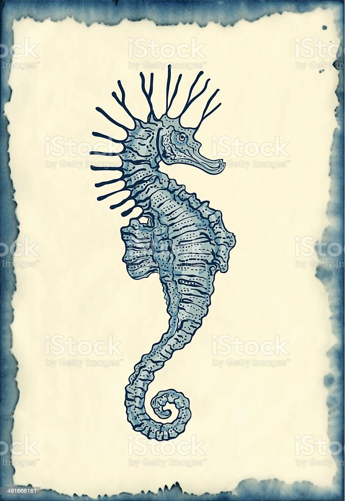 Disegno Su Sfondo Blotted Cavalluccio Marino Immagini Vettoriali