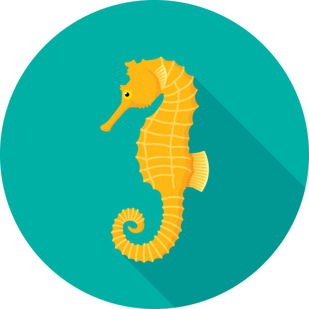 Seahorse Icon Flat Vector illustration of a seahorse against a teal background in flat style. sea horse stock illustrations