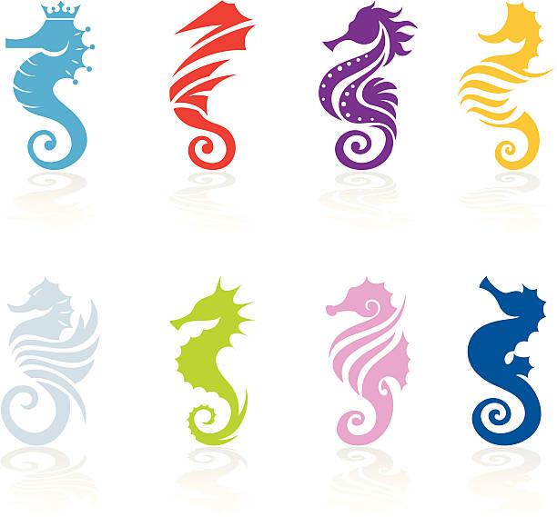 Seahorse Set of 8 seahorses design sea horse stock illustrations