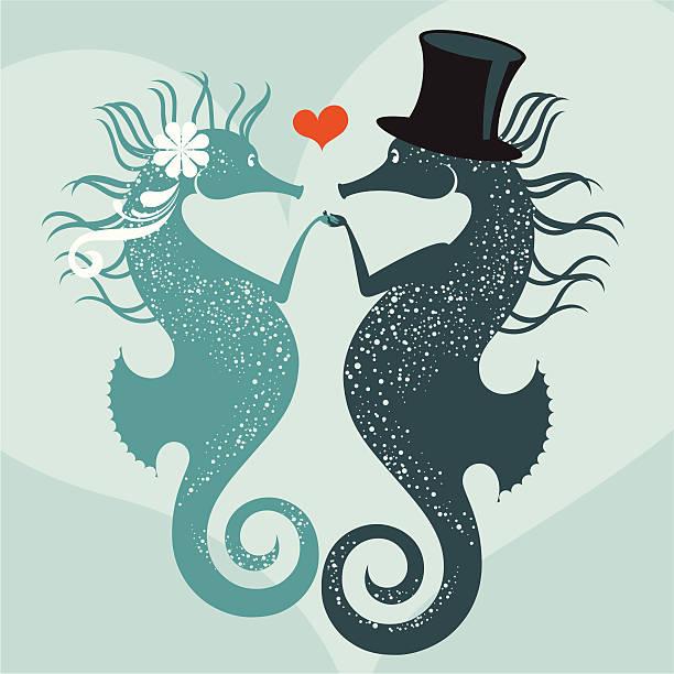 Pławikoniki, koniki morskie małżeństwo. – artystyczna grafika wektorowa