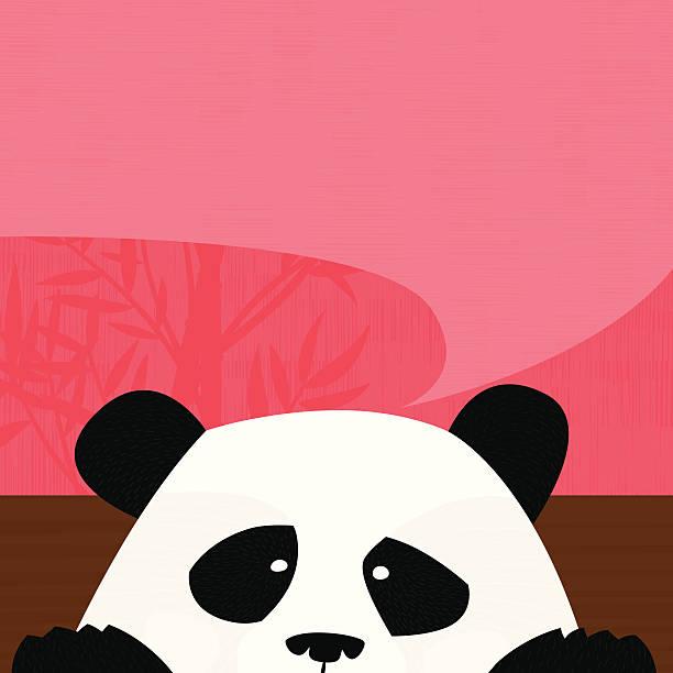 Seak Peeking panda vector art illustration