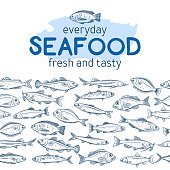 Seamleess border hand drawn fish. Seafood background with bream, mackerel, tunny or sterlet, codfish and halibut. Outline icon tilapia, sardine, anchovy, sea bass and dorado. Retro engraving style.
