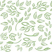 Seamless and fresh pattern with branches,leaves for organic labels, healthy food packaging, natural cosmetics, shop, fabric, vegan products. Green vector background.