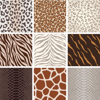 Seamless animal background pattern