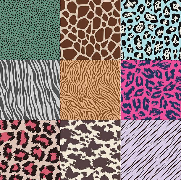 ilustraciones, imágenes clip art, dibujos animados e iconos de stock de excelente patrón de piel animal - textura de leopardo