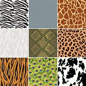 A series of 9 animal-themed seamless backgrounds including feathers, peacock feathers, tiger, leopard, zebra, cow and giraffe skin, as well as fish scales and snake skin.