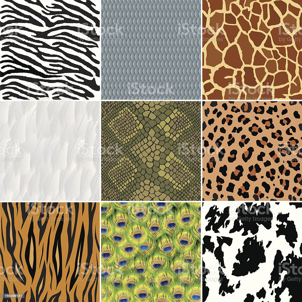 Seamless animal wallpapers (backgrounds) vector art illustration