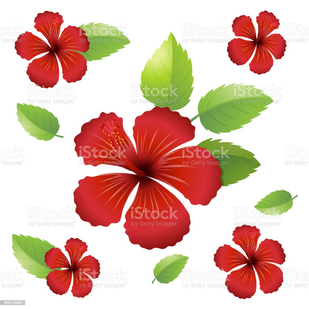 Seamless Background Design With Hibiscus Flowers Stock Vector Art