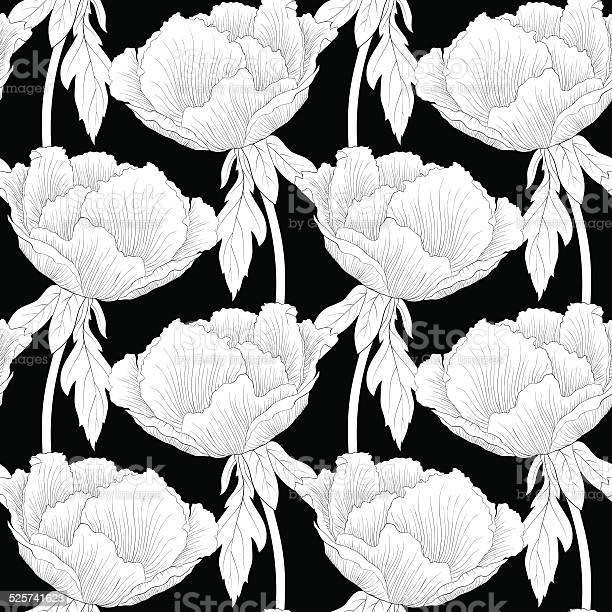 Seamless background flowers peony with stem and leaves vector id525741623?b=1&k=6&m=525741623&s=612x612&h=lyn 9qivqvluogqyzlzf1jput8wrx kpqhz5ufkpgag=