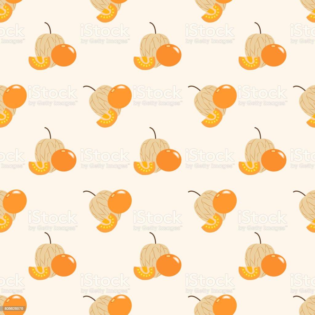Fondo transparente imagen coloridas frutas tropicales uchuva physalis - ilustración de arte vectorial