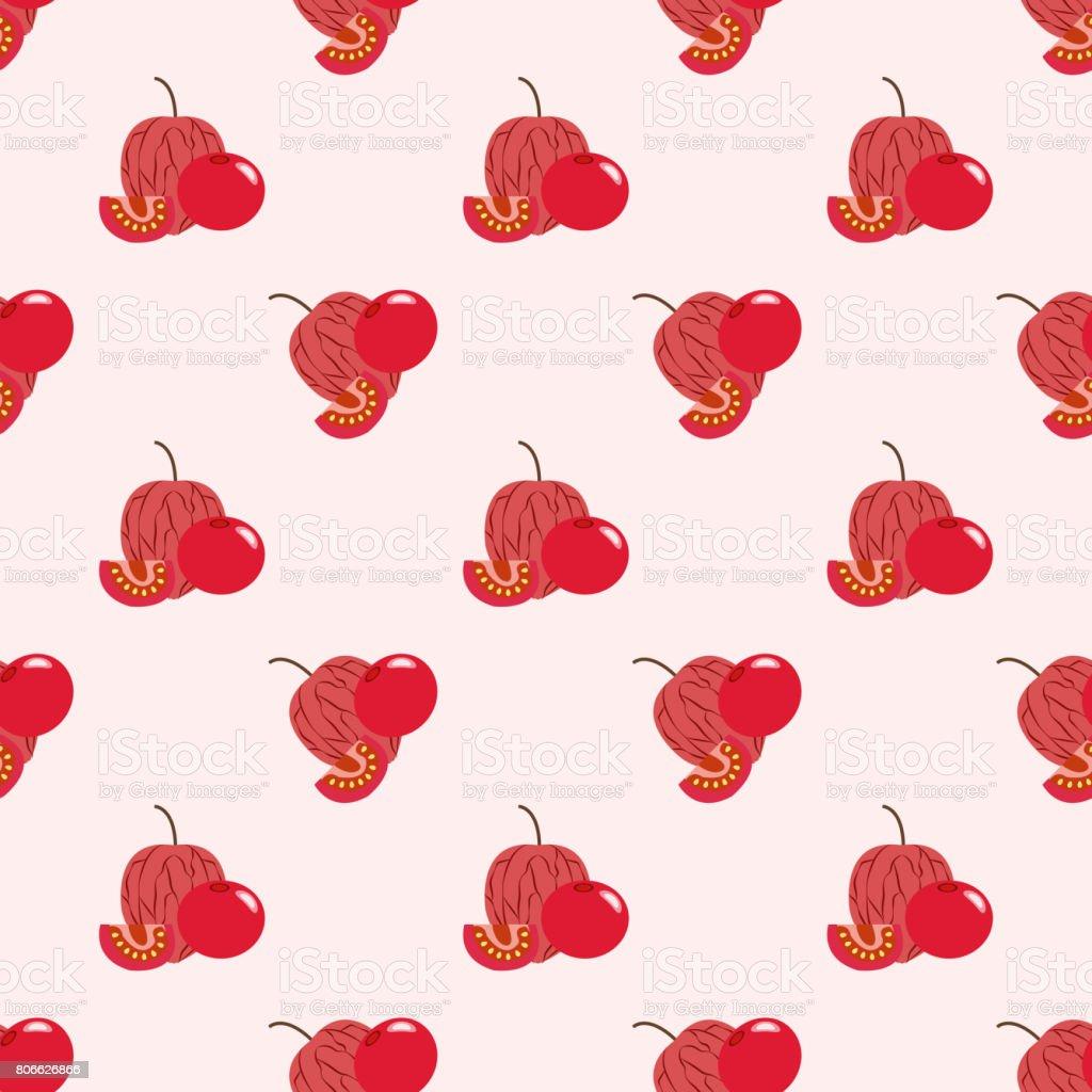 Fondo transparente imagen coloridas frutas tropicales rojo uchuva physalis - ilustración de arte vectorial