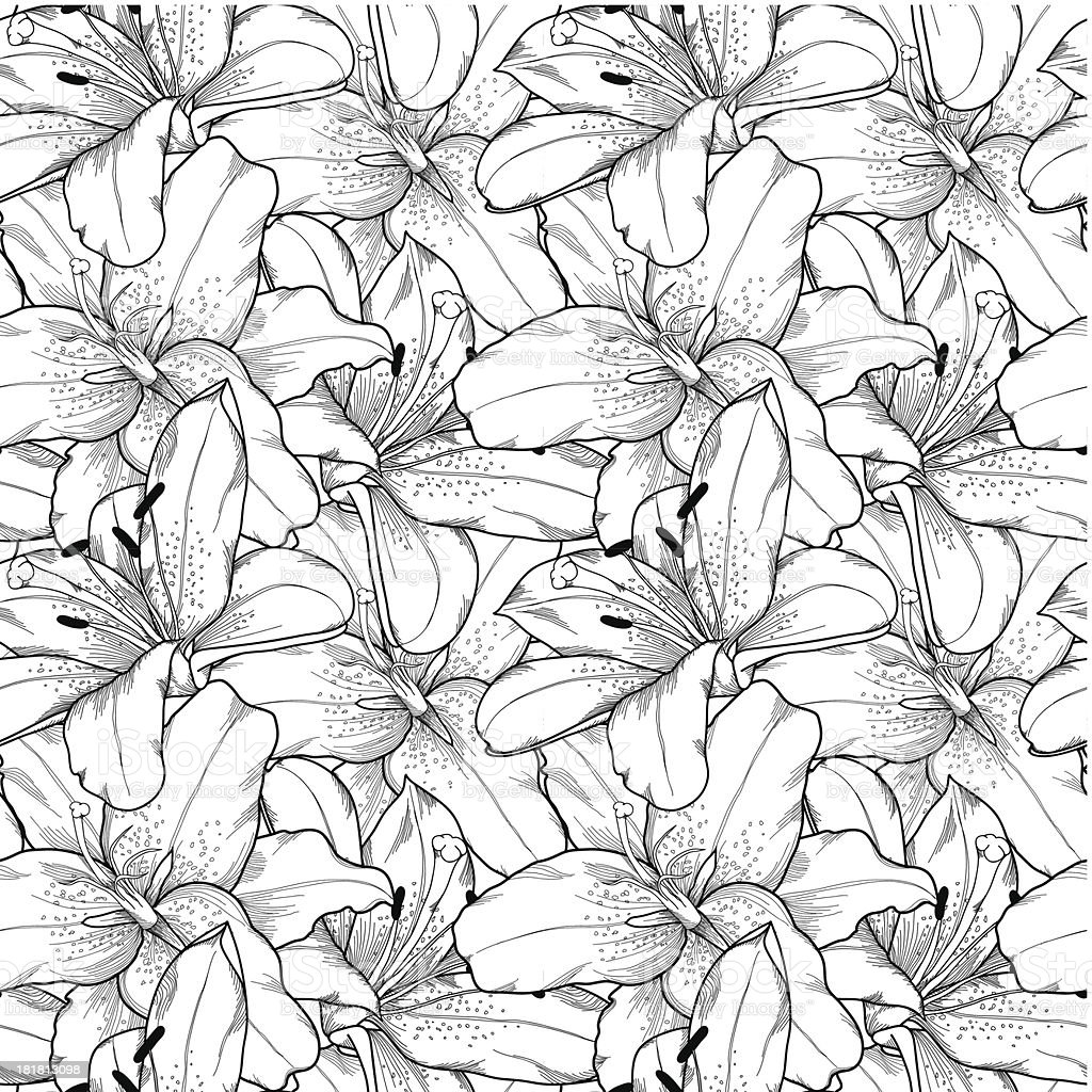 seamless background of black and white lilies hand-drawn royalty-free stock vector art