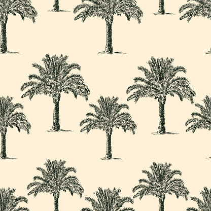 seamless background of the palm trees