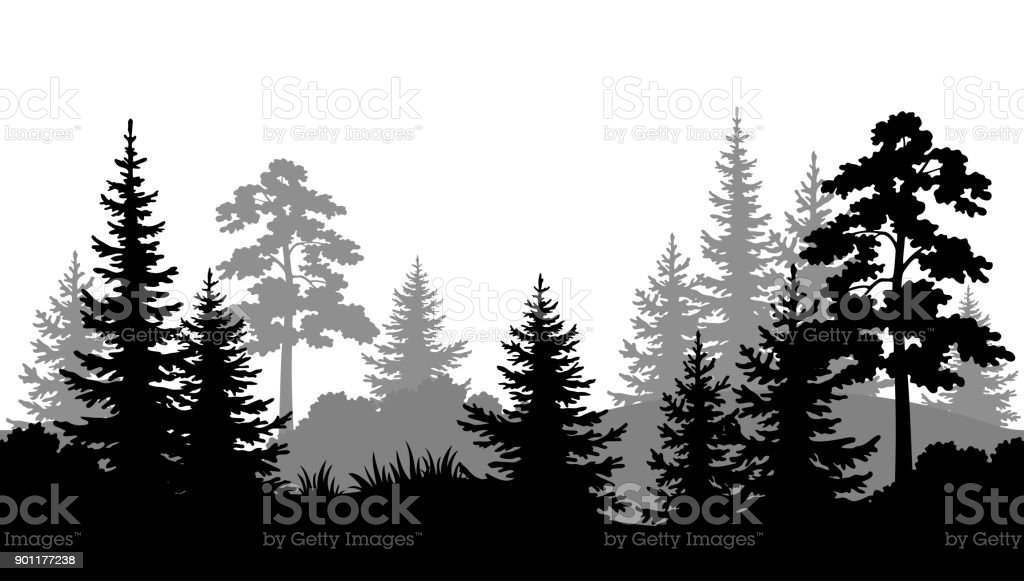Seamless Background, Summer Forest Silhouettes vector art illustration